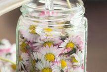 DIY Kosmetik Selbermachen