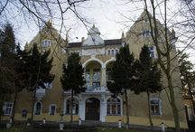 Nielestno - Pałac / Pałac w Nielestnie powstał w 1603 r. z inicjatywy Adama von Gersdorf. W latach 1709 - 1891 należał do rodziny hrabiów von Kottulinski. Po II wojnie światowej pałac przechodził w różne ręce, aby w latach 70. stać się domem dla osób niepełnosprawnych intelektualnie.