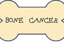 Bone Cancer / All about bone cancer, bone cancer symptoms, bone cancer causes, bone cancer treatments