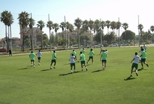 Concentraciones Deportivas / Imágenes del Elche CF entrenando en nuestras instalaciones. Verano 2012