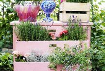 Repurposed into Planters