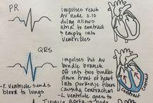 Sydän terveys