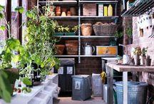 Greenhouse / Potting bench