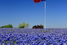 Texas the place of my birth