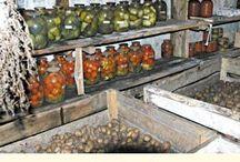 pivnice cellar