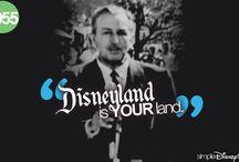 Disney deserves its own Board