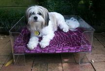 luxury dog beds 2fuffballs.com