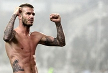 David Beckham  / by Elena Almer