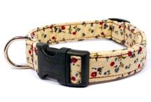 Pet Collars / by Vanessa King