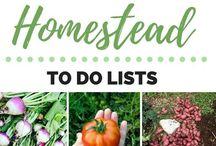 Homestead Planning