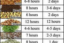 Healthy Soaking / Everything about the healthy benefits of soaking, grains, seeds, nuts, legumes, recipes, tips, etc