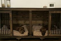 Doggies furbabies
