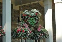 Hanging Baskets / Pamela Crawford Side Planting offers a variety of solutions for lovely hanging baskets and other hanging floral arrangements. We offer hanging baskets and basket planters that will help you create a beautiful hanging garden.