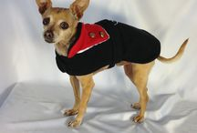 Winter Warmth / Things to keep your pooch warm this winter