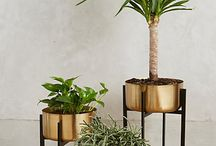 Pflanzenständer plant stand