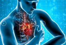 Top Cardiologist in Kolkata / If you find Top Cardiologist in Kolkata, you have to consider the name Sankha Subhra Das, the most experienced Cardiologist in Kolkata.