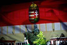 Szent István napi forgatag - Night Projection fényfestés / Szent István napi Forgatag - Pestszenterzsébet, Budapest, Hungary - Night Projection fényfestés  További információ: https://www.facebook.com/events/394447284092335/  #SzentIstván #forgatag #Pestszenterzsébet #NightProjection #fényfestés #raypainting #Visuals