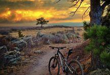 Biking into the nature