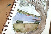 Molly Alexander Watercolors