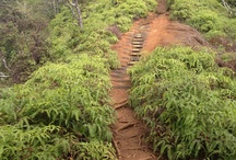 """#ThisDivaHikes / Hikes I've done & those on the """"to do"""" list / by H. Kanoa Greene"""