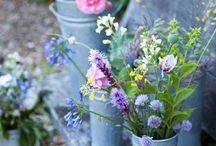 bloemen/ tuindeur