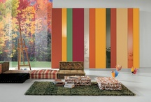 multicolor products we love !!