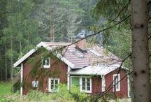 chalet in svezia / Leśna chata w stylu skandynawskim
