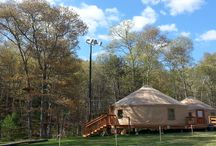 Opening Weekend! / We open to the public on May 16!  Join us In The Trees!