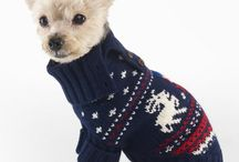 Holiday Fashion (for the doggy)  / by Rashon Carraway | Mr. Goodwill Hunting