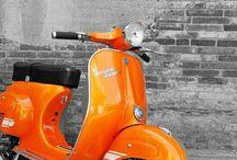 clr. ORANGE / Orange