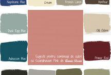 Color combinations ASCP