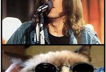 Funny cute or weird  cat stuff