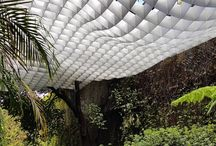 Architecture Canopy