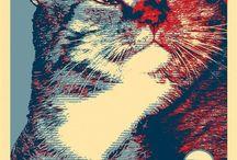 CATS!!!!!