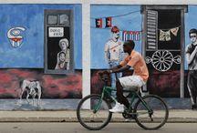 Bikes Umbrellas & Fish