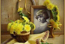 """Tatyaro (Tatiana Romaniuk); Arta fotografiei / Este renumită pentru fotografiile ei cu tematică """"retro""""  sau natură moartă cu minunatele și atât de neluate în seamă lucruri mărunte."""