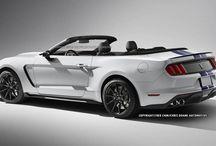 Mustang Inspirations