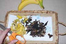Banana peaks in compost