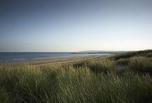 The Gallivant | Beach