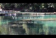 Jehova Dios, tu Creador, tu Padre Celestial y amigo. JW.ORG