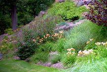 Annas Garden