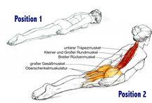gym schiena