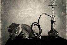 Smoke ;-)