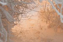 Let it snow - Wonderful Winter