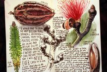 Creative Journals,Notebooks