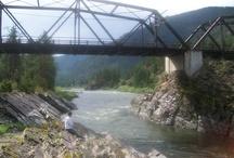 The Beauty of Montana / by Kathy Shipley McClellan
