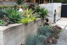 Outdoors / Ideas for a beautiful modern landscape