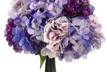 Floral / by Katie Miller Sinkus