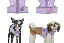 Pet crafts & clothes