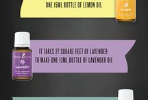 YOUNG LIVING ESSENTIAL OILS! / by The Sustainable Couple